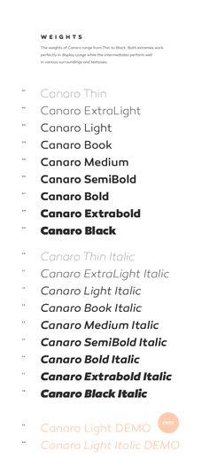#premium Canaro 11