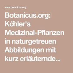 Botanicus.org: Köhler's Medizinal-Pflanzen in naturgetreuen Abbildungen mit kurz erläuterndem Texte :