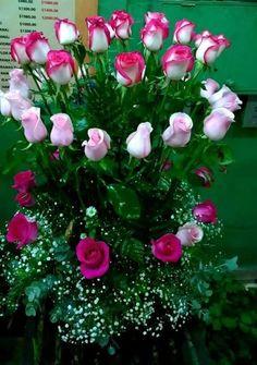 1 million+ Stunning Free Images to Use Anywhere Flowers Gif, Beautiful Rose Flowers, Amazing Flowers, My Flower, Beautiful Flowers, Beautiful Love Pictures, Rose Images, Good Morning Flowers, Flower Wallpaper