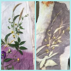 Weeds and leaves composition. Natural printing on silk. Blog http://terriekwong.blogspot.hk/2017/11/natural-prints-with-weeds-and-flowers.html