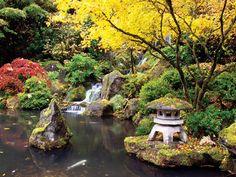 Sunset Magazine's Top Botanical Gardens | Mendocino Coast Botanical Gardens – www.gardenbythesea.org