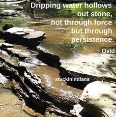 """""""Dripping water hollows out stone, not through force but through persistence."""" ~ Ovid #quote"""