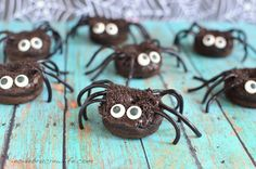 How cute are these chocolate pumpkin spider donuts?