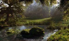 art klontak nature stones forest moss pond water reservoir foliage ...