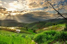 Thai farms by PINIT NUANGPIROM on 500px