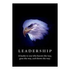 Bald American Eagle Motivational Leadership Poster Motivational Leadership, Motivational Quotes For Women, Inspirational Quotes, Motivational Posters, Positive Quotes, Eagle Images, Eagle Pictures, Life Coach Training, Woman Quotes