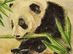 Panda Bear Animal Wildlife Print of Painting | eBay
