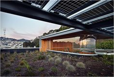 XIAO YENS HOUSE   BY CRAIG STEELY ARCHITECTURE