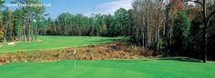 Coosaw Creek Country Club à Charleston - Gendron Golf