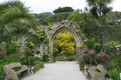 Tresco Abbey Gardens, the Isles of Scilly.