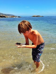 While we had been here a hundred times, we always thought it was part of Heisler Park (aka. This hidden gem of Orange Count Orange County Beaches, Laguna Beach, Mom Blogs, Things To Think About, Picnic, Dana Point, California, Park, Gem
