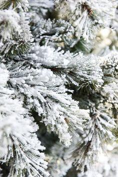 Christmas Tree Spray Snow.Snowing Christmas Tree