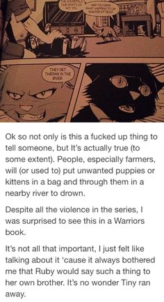 People, especially farmers, will (or used to) put unwanted puppies or kittens in a bag and through. Warrior Cats Scourge, Warrior Cats Comics, Warrior Cats Funny, Warrior Cat Memes, Warrior Cats Fan Art, Warrior Cats Series, Warrior 3, Cat Comics, Cat Jokes