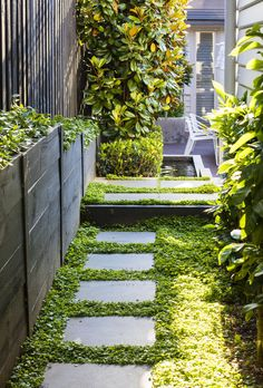 Carolyn and Joby Blackman of Vivid Design have transformed the garden of a Melbourne home, creating a visually softer and low-maintenance retreat. maintenance Australian garden Lush and low-maintenance front yard makeover Side Yard Landscaping, Courtyard Landscaping, Modern Landscaping, Landscaping Ideas, Tropical Landscaping, Walkway Garden, Residential Landscaping, Tropical Gardens, Landscaping Software