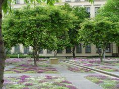 Stadtmuseum Dresden / r+b landschaft s architektur
