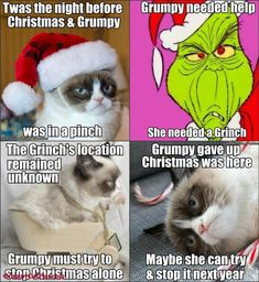 Twas the Night before Christmas, by Grumpy Cat Christmas Cat Memes, Christmas Alone, Merry Christmas Funny, Christmas Animals, Christmas Stuff, Christmas Christmas, Christmas Ideas, Grumpy Cat Meme, Funny Cat Memes