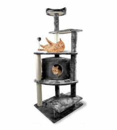 cat scratching post condo - Furhaven Tiger Tough Cat Tree House Furniture for Cats and Kittens, Platform House Playground, Gray *** You can find out more details at the link of the image. (This is an affiliate link) Cat Tree House, Cat Tree Condo, Cat Condo, Wooden Cat Tree, Wood Cat, Litter Box Enclosure, Furniture Scratches, Condo Furniture, Furniture Ideas