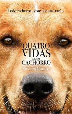 Watch A Dog's Purpose . Online Full Hd Movies, A Dog's Purpose . Full Online Movie Watch, Online A Dog's Purpose . Films Hd, Hd Movies, Movies To Watch, Movies Online, Movies And Tv Shows, Movies Free, Saddest Movies, 2017 Movies, Film 2017