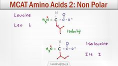 MCAT Amino Acids 2 - Hydrophobic Side Chain Structure and Characteristics