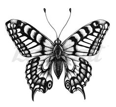 Butterfly Tattoo Cover Up, Butterfly Tattoo Meaning, Butterfly Tattoos For Women, Butterfly Tattoo Designs, Cover Tattoo, Vintage Butterfly Tattoo, Leg Tattoo Men, Leg Tattoos, Sleeve Tattoos