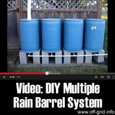 220 Gallon Rain Barrel System | http://thehomesteadsurvival.com/220-gallon-rain-barrel-system/