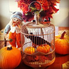 Fall decorations in my house!