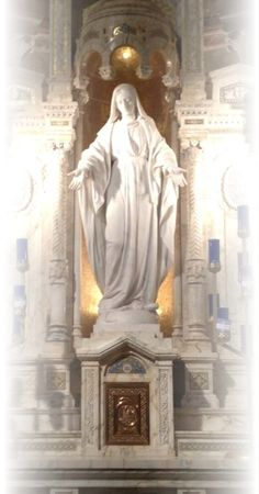 In the Solemnity of Immaculate Conception each year community of the Congregation of the Mission during the common prayer  by a special act ren...