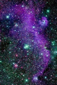 #astrointerest - The #SeagullNebula in the constellation #CanisMajor