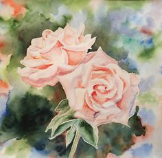 Magdalena Ślesińska watercolor rose
