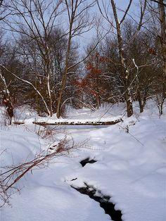 Footbridge over a creek in Franklin, NY
