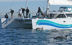 Aolani Catamaran Sailing - 48 guest max http://www.aolani.cc San Diego, CA  & Bayshots San Diego http://bayshots.smugmug.com/