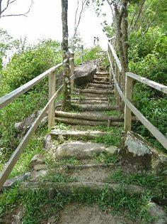 Steps along Tet Paul trail - Picture of Soufriere, Soufriere ...
