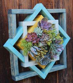 Ürünlerimiz ve tasarımlarımız hakkında bilgi almak için lütfen bizimle iletişime geçin. Dilediğiniz tasarımları birlikte dizayn edelim. ������ . . . .  #terrarium #teraryum #çiçek #hediyelik #kaktus #kaktüs #fanus #dekor #bahçe #minibahce #doğa #mini #vazo #hediye #hediyelik #sürpriz #sevgili #ofis #ask #açılış #mudo #mudoconcept #eniyifiyat #saydambahce #butik #cool #doğal #ahşap #decoratif #masif #vintage http://turkrazzi.com/ipost/1524828255474163773/?code=BUpRzgvBCA9