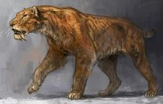 Smilodon by Jonathan Kuo