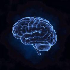 Psychologia sportu w piłce nożnej • Psychika piłkarza • Wprowadzenie do psychologii sportu • Wiedza o psychologii piłki nożnej >>