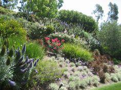 Garten Am Hang Anlegen Gartenpflanzen Blumen