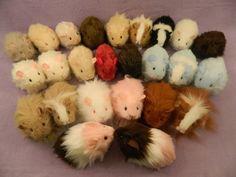 Guinea pig plushies from Morumoto.