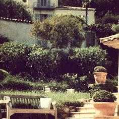 #capferrat #villefranche #beaulieu #monaco #montecarlo #frenchriviera #cotedazur Monte Carlo, Monaco, Somerset Maugham, Ferrat, Pine Forest, French Riviera, Luxury Villa, Saints, Environment