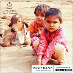 We are Pune's Milk Brand. Our milk is organic milk from desi cows. We deliver farm fresh organic vegetables at your doorstep in the morning. Milk Brands, Boys Playing, Organic Vegetables, Finding Joy, Cows, 3 Years, Little Girls, Girly, Happiness