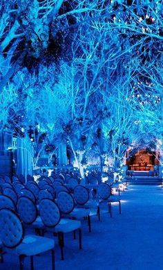 Blue Wedding Ceremony