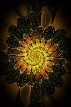 Spiral Petals Fractal Art