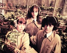 little bebe harry, ron and hermione