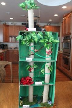 Dioramas on rainforest | Hands-on Homeschool Carnival | Jimmie's Collage