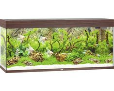Design Aquarium Kast : Aquatlantis aquarium kast fusion 150 led zwart huis: woonkamer