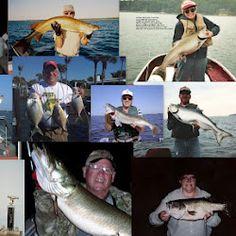 (1) WillCFish #Fishing TipsandTricks - Google+