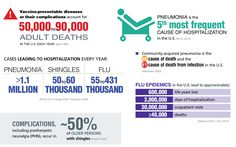 www.adultvaccination.org