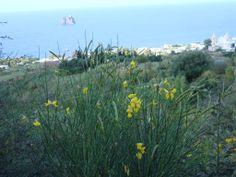 Eolie- Ginostra- Sicilia