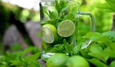 Jak na redukční kúry Mint Leaves Benefits, Peppermint Water, Top 10 Healthy Foods, Detox Diet Recipes, Abdominal Bloating, Detox Salad, Detoxify Your Body, Infused Water, Medicinal Herbs