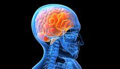 El Parkinson será investigado con nuevas tecnologías - http://notimundo.com.mx/salud/el-parkinson-sera-investigado-con-nuevas-tecnologias/11839