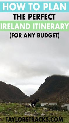 Plan the perfect Ireland itinerary with this ultimate Ireland travel guide. You won't miss a thing with this comprehension guide, click to start planning! #ireland #europe ****** Ireland itinerary | Ireland travel | Ireland travel tips | Ireland travel best spots | Ireland travel on a budget | Ireland vacation | Ireland destinations | Europe travel | Europe destinations | Dublin Ireland | Galway Ireland | Belfast Ireland